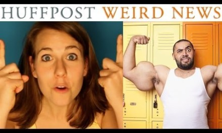 Huff Post Weird News Theme