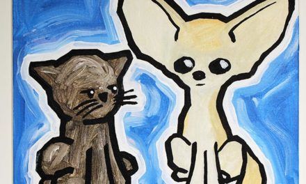 Cat And Fennec Fox