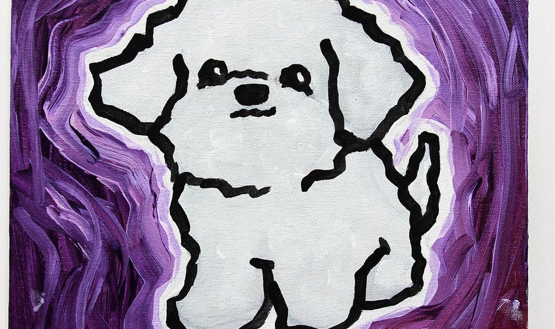 6th Generic Dog