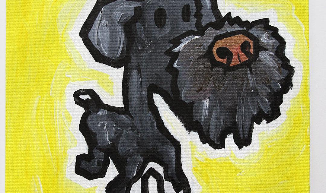 Dog 10